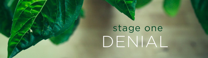 stage-one-denial