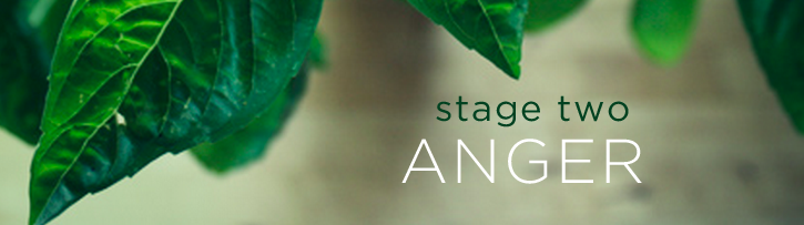stage-two-anger